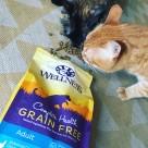 Wellness Complete Health Grain-Free Cat Food at PetSmart