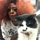 Drag Queen Bingo at La Gattara Cat Cafe