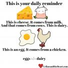 Are eggs dairy? No, god no.